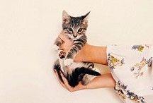 Animals / Cuteness overload