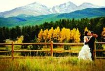 Weddings / by Denver Life Magazine