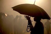 umbrellas / for sun and rain