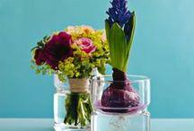 Colour Palettes / Interior design decor colour color