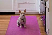 Kitchen Flooring / Perfect flooring materials with resilience for everyday messes in the kitchen