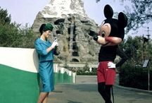 A holiday of a lifetime - Disney / Nothing like Disney