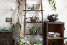 DIY Home Projects / by Stephanie Monteran