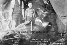 Commercial Fishing and Whaling / Images from the Clarke Historical Museum that relate to the Fishing and Whaling industry in the Northern California area