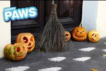 Halloween Festivities / Crafts, Recipes and Fun for a Spooktacular Halloween. Be sure to check out the Hoppy Paws Scary Cat Paw Print Stamp Kit and the Hairy  Monster Footprint Stamp Kit at www.hoppypaws.com.