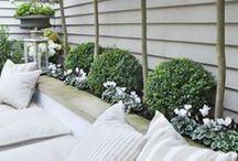5 Great Small Garden Ideas / 5 ideas to create a super small garden 1) Bigger is better 2) Repaint 3) Create a mix 4) Catch the light 5) Put on a show
