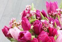 Kauniit kukat