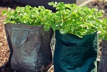 Zrób to sam / Garden DIY