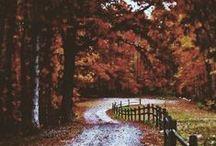 Eilish Autumn
