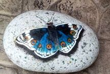 pebbles and stones - Butterfly