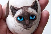 pebbles and stones - Cats