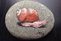 pebbles and stones - Snail