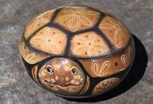 pebbles and stones - Turtles