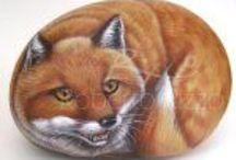 pebbles and stones - Fox