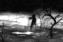 Shadows....