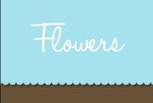 Wedding Flowers / by Bride & Groom Direct