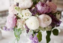Flowers / by Becky Caprara