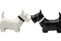 salt & pepper shakers / by Peggy White
