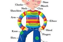 Enkku: kehonosat