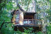 Tree Houses & Lodges