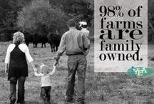 life on the farm / Producing beef is more than just a way of making a living - its a tradition infused with legacy, passion, and perseverance.