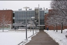 Campus in Winter / Views of the UC Blue Ash campus in the snow. / by UC Blue Ash