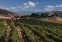 Temecula Wine Country / Temecula Wine Country