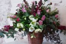Portfolio - House Flowers / Fantail Flowers for gorgeous natural and seasonal floral arrangements to enhance and beautify your home or business.   Bring the beauty of nature indoors!   Contact Michelle at Fantail Flowers - 0468 485 423.