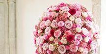 Flowers arranged / Still a beautiful job...