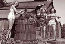 Lodi Wine Country / Lodi Wine Country