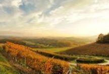 San Luis Obispo Wine Country / San Luis Obispo Wine Country