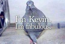 Hahah xD #funny / Śmieszne obrazy :'D