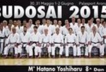 Budosai_2015