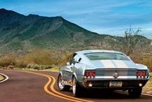Mustang Dreams / The Other American Sports Car / by David Wierengo