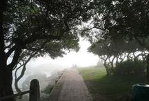 Misty weather / Camps bay South Africa 16 May 2015