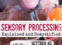 Sensory play - Vestibular / Sensory play Ideen für den Gleichgewichtssinn
