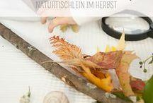 Deutsche Montessori Blogs / Montessori und montessori-orientierte Blogs auf deutsch