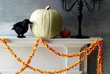 Halloween / by Amy Ferrantino