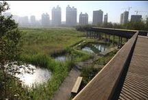 Landscape Architecture / Architektura Krajobrazu