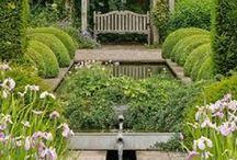 English garden / Ogród angielski