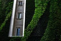 Vertical gardens / Ogrody wertykalne