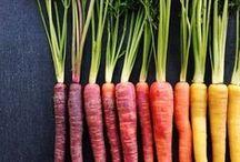 Cooking // Vegetables