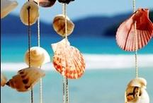 zon zee strand schelpen......