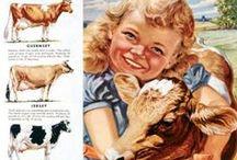 On the Farm ei ei o! / by Sherry Arguelles