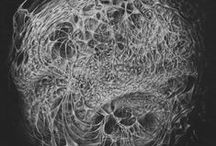 Science /  microscopic image/photomicrography