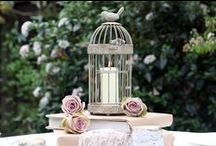 birdcages / flowers / • not for birds •