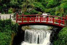 Travel Taiwan / All thing about travelling and things to do in Taiwan