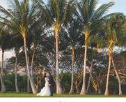 Olowalu Plantation House Weddings / Olowalu Plantation House Maui wedding inspiration