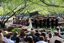 Scottsdale Wedding Ceremonies at The Plaza / Regale at DC Ranch is a fantastic wedding venue to hold your wedding ceremony. / by Regale Dc Ranch