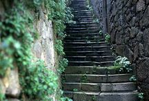"Up and down / ""Dois ou três degraus eram sempre escadaria."" Pedro Nava  (Two or three steps were always staircase)"